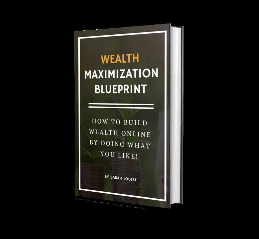 wealth maximization ebook